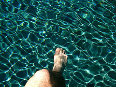 https://www.flickr.com/photos/salimfadhley/25986103/in/photostream/