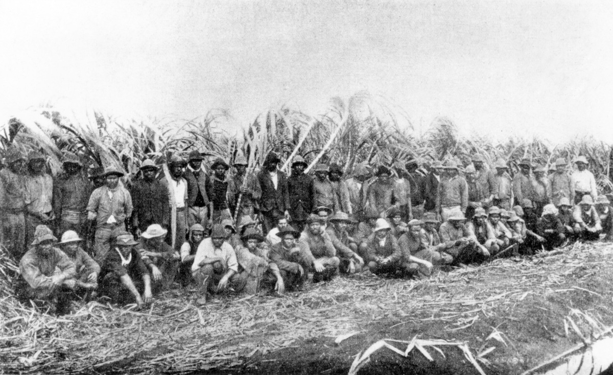 Australian South Sea Islanders in Queensland – Stories ... Slavery In The South